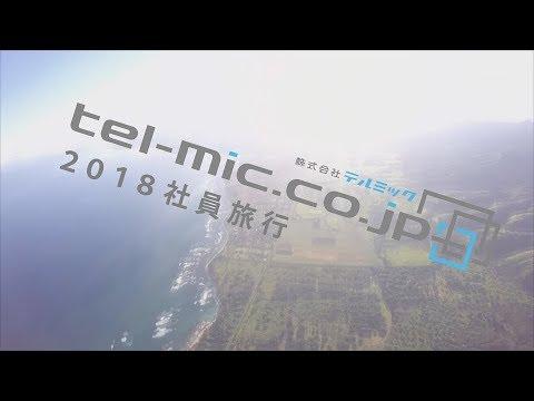 株式会社テルミック 社員旅行 ハワイ2018