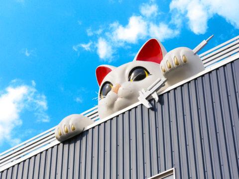 テレビ東京「ガイアの夜明け」にて常滑営業所招き猫TV放映予定!